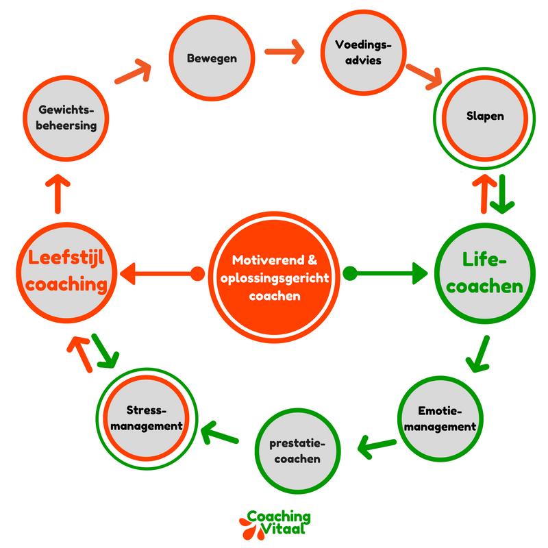 De bouwstenen van Lifecoaching en Leefstijlcoaching bij Coaching Vitaal