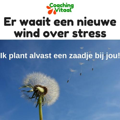 Andere denkwijzen over stress bij Coaching Vitaal