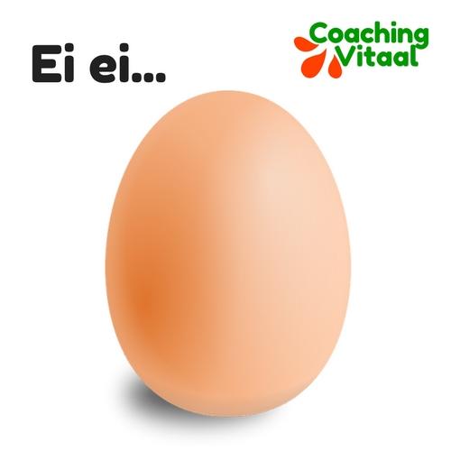 een ei is een wonder van de natuur bij Coaching Vitaal in Nieuwkoop