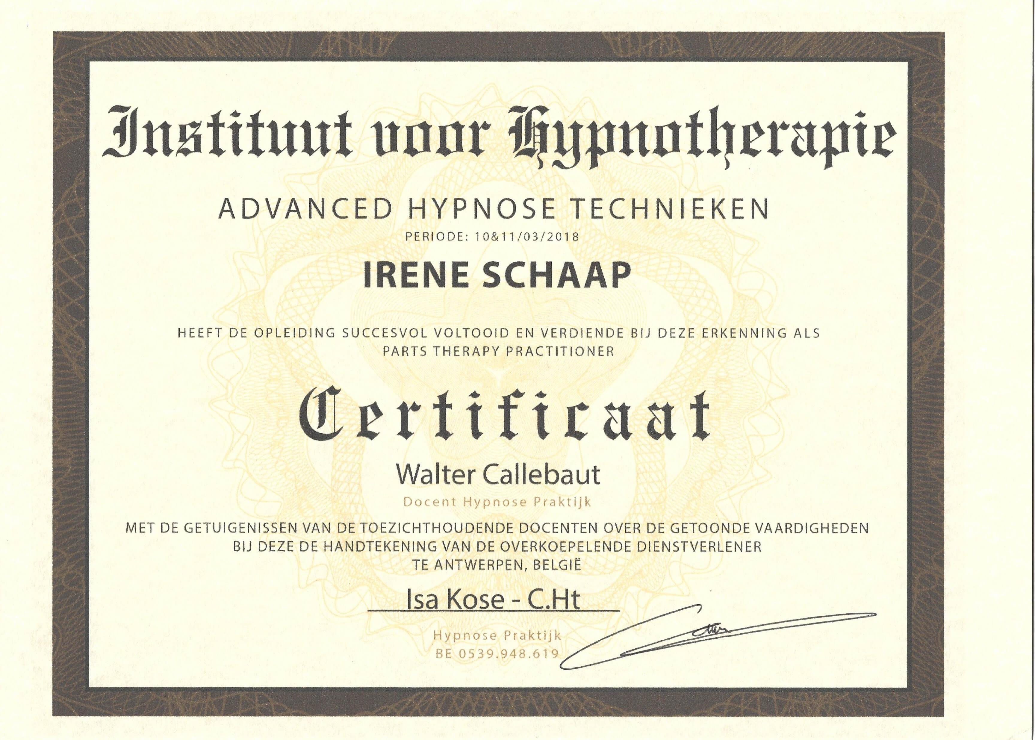 Kwalificaties Irene Schaap van Coaching Vitaal in Nieuwkoop