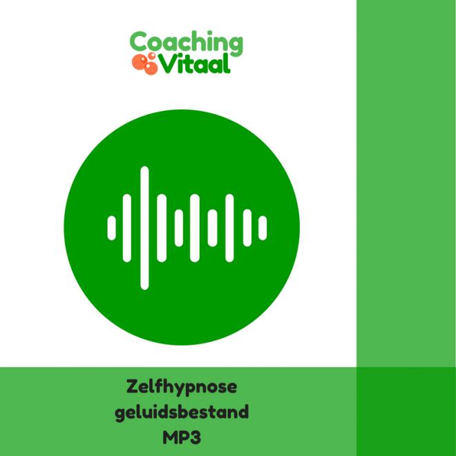 Zelfhypnose Coaching Vitaal