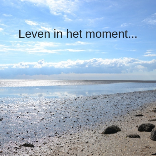 Leven in het moment. Blog van Coaching Vitaal, hypnose behandelingen in Nieuwkoop