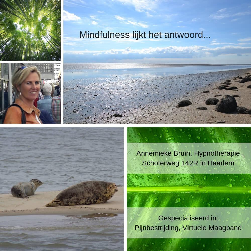 Annemieke Bruin Hypnotherapeut, gastblog over mindfullness
